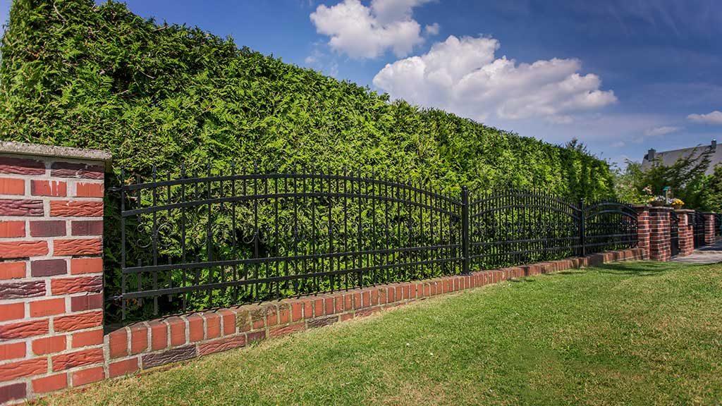 Mauer-Zaun-Systeme